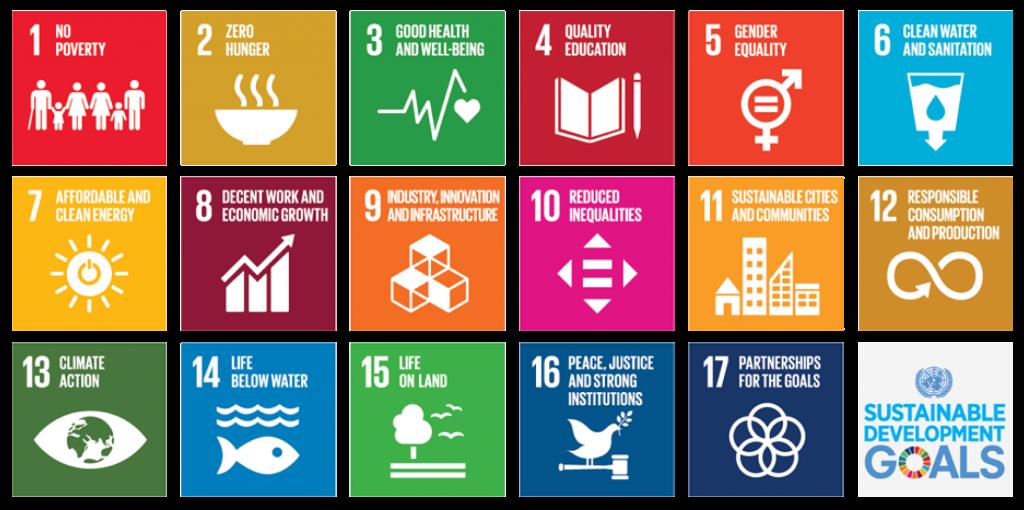 UN Goals Ubiquity University